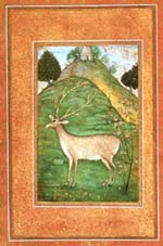 A Mughal Painting