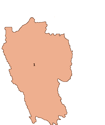 Mizoram Election Map