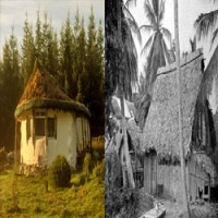 People lived in houses made from wood and straw