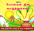 Pongal Cards in Tamil