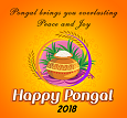 Pongal Cards 2018