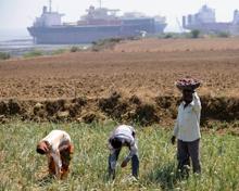 Gujarat Business