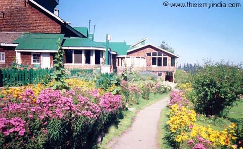 Kashmir Picture Gallery,This is my India