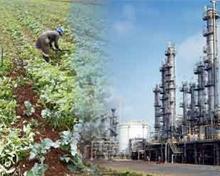 Madhya Pradesh Employment